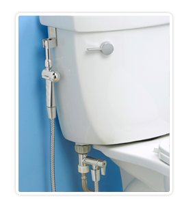 Aquaus Bidet Stainless Steel Toilet