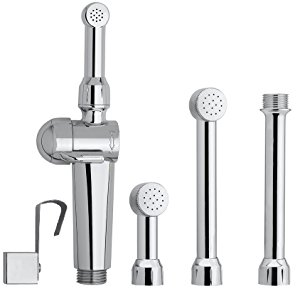 Hand Held bidet sprayer for toilet tips